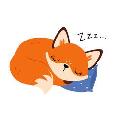 Cute little fox sleeping cuddling on soft pillow vector