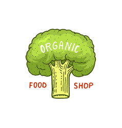 healthy organic food or labels and elements for vector image