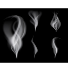 realistic smoke on black background vector image