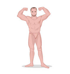 strong naked man vector image