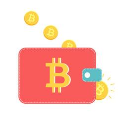 Wallet with golden coins vector