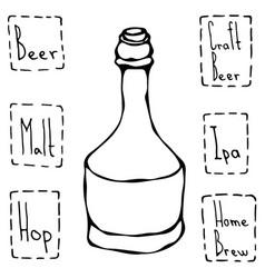 beer bottle hand drawn vector image