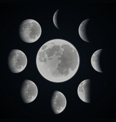Moon phase set vector image