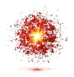 Red explosion isolated on white background vector image vector image