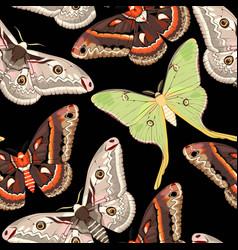 Flying moths seamless vector