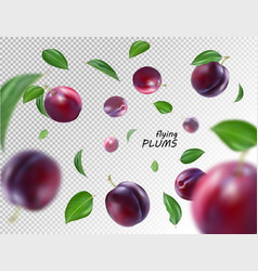 flying purple plums on transparent background vector image