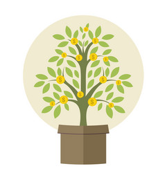 money plant vector image