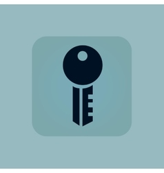 Pale blue key icon vector