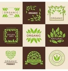Eco Organic Labels Set vector image
