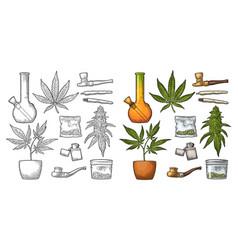 set marijuana vintage black and color vector image vector image