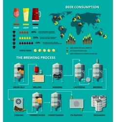 Beer infographic vector
