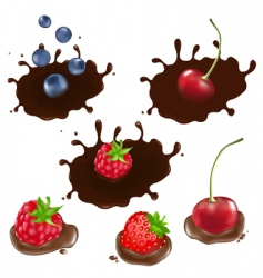Berry in chocolate vector