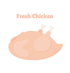 Fresh chicken tasty fast food whole meat vector