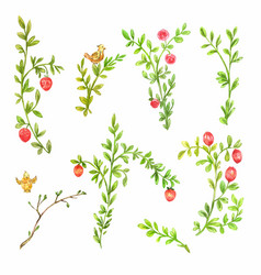green spring branches with pink flowers isolated vector image