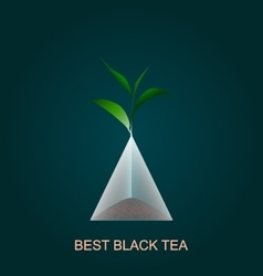 Isolated pyramid of black tea with branch vector image