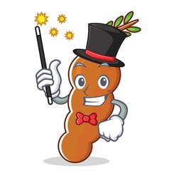 Magician tamarind mascot cartoon style vector