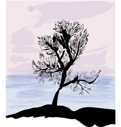Sea sunrise or sunset ans tree silouette vector