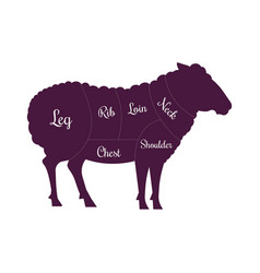 Sheep mutton meat cuts butcher icon vector