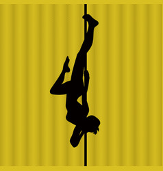 pole dance woman vector image