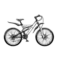 mountain bicycle vector image vector image