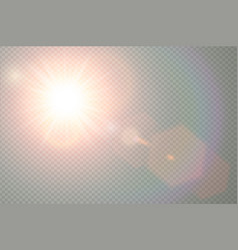 transparent sunlight special lens flare vector image vector image