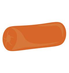 A comfortable orange pillow or color vector