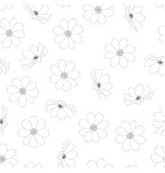 cosmos flower outline white background vector image