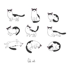 Set of different doodle poses cat Pets vector image