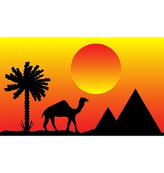 sunset in egypt with palms pyramids and camel vector image