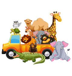 wild animals on yellow truck vector image