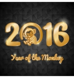 Year of the Monkey design vector image