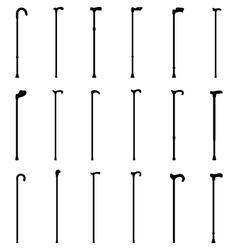 walking sticks vector image vector image