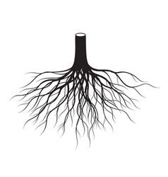 Black tree roots vector