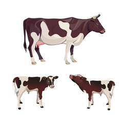 Cow with calves vector