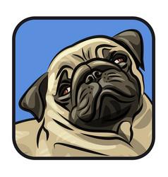 dog puppy portrait vector image