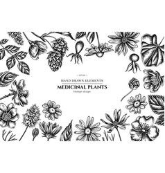 floral design with black and white celandine vector image