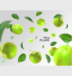 Flying green plums on transparent background vector