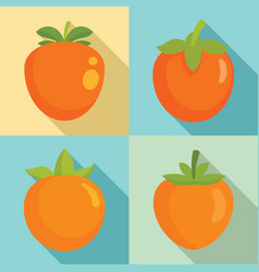 persimmon icon set flat style vector image