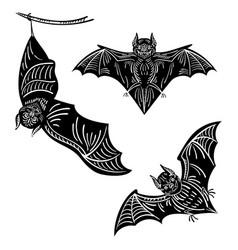 set bats a collection terrible bats vector image