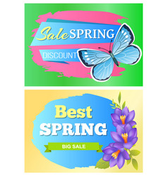 set of posters butterfly and flower spring sale vector image