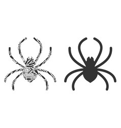 Spider collage of repair tools vector