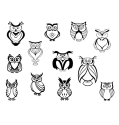 Cute owls and owlets vector image