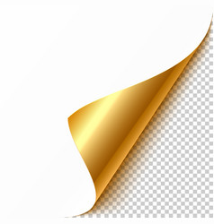 gold curled corner with reflection and shadow on vector image vector image