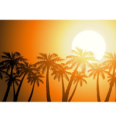 Tropical palm trees silhouette at sunrise vector image