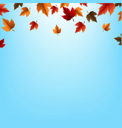 Autumn border with leaves vector