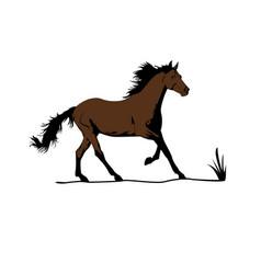 Choco horse vector
