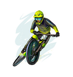 Cyclist on a mountain bike on white background vector