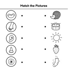 Five senses matching game for kids sight touch vector