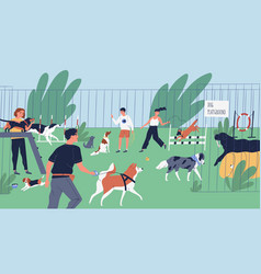 funny people playing with dogs at playground yard vector image