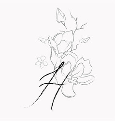 handwritten line drawing floral logo monogram h vector image